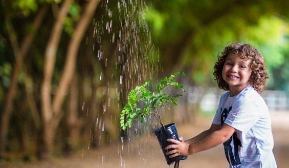 Foto de uma criança molhando uma muda de árvore