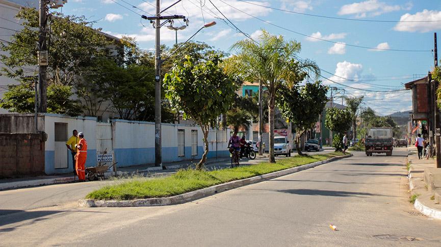Foto do canteiro da rua das Camélias