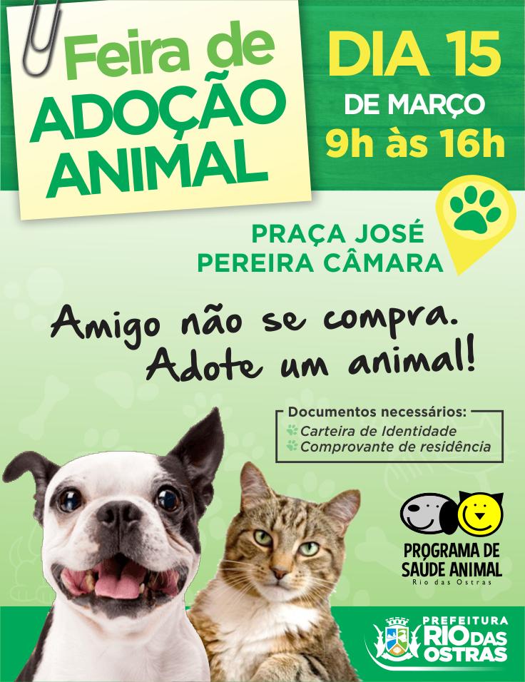 Feira de adoção animal